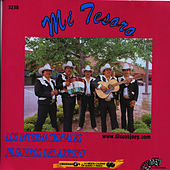 Play & Download Mi Tesoro by Los Internacionales Jilgueros del Arroyo | Napster