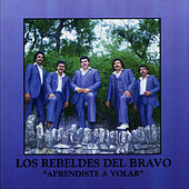 Play & Download Aprendiste a Volar by Los Rebeldes del Bravo | Napster