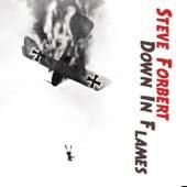 Down In Flames by Steve Forbert