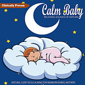 Play & Download Calm Baby Relaxing Sounds of Nature: Natural Sleep Aid & Calming for Newborn Babies, Mothers by Soothing White Noise for Relaxation | Napster