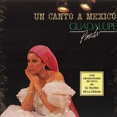 Play & Download Un Canto A Mexico by Guadalupe Pineda | Napster