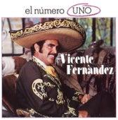 Play & Download El Número Uno by Vicente Fernández | Napster