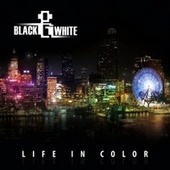 Play & Download Life In Color by Various Artists | Napster