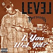Is You Wet Yet? Feat. Dorrough by Level