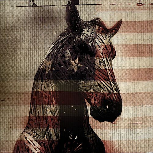 Live Horses by Needtobreathe