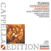 Telemann: Flute Concerto / Overtures by Various Artists