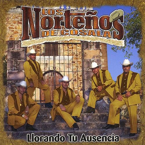 Play & Download Llorando Tu Ausencia by Los Norteños De Cosala | Napster
