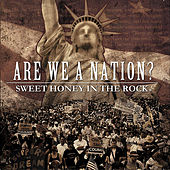 Are We A Nation? - Single by Sweet Honey in the Rock