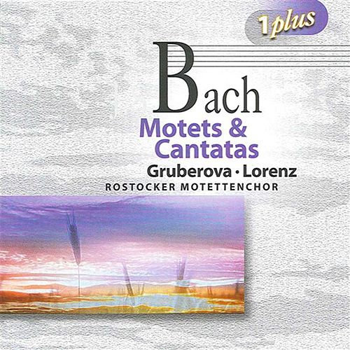 Bach: Motets & Cantatas by Various Artists