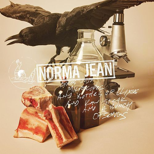 Play & Download Birds And Microscopes And Bottles Of Elixirs And Raw Steak And A Bunch Of Songs by Norma Jean | Napster