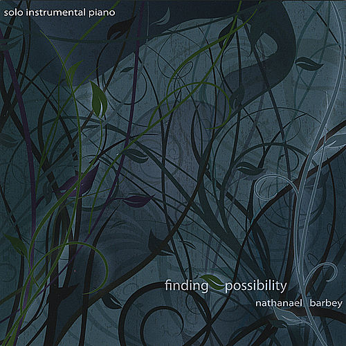 Play & Download Finding Possibility by Nathanael Barbey | Napster
