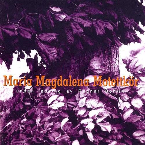 Play & Download Maria Magdalena Motettkor by Ragnar Bohlin | Napster