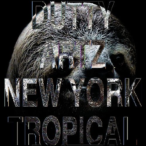 Play & Download New York Tropical by Various Artists | Napster