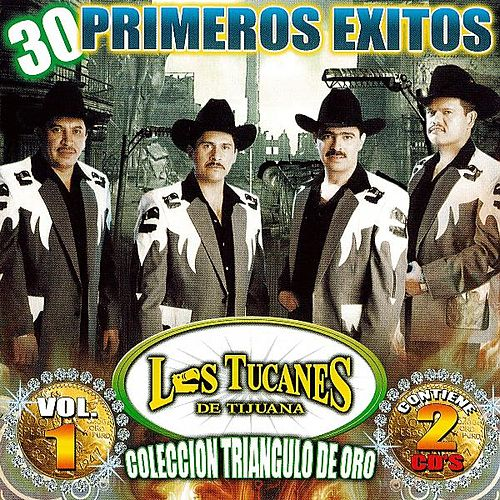 Play & Download Los Tucanes De Tijuana Coleccion De Oro by Los Tucanes de Tijuana | Napster