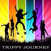 Trippy Journey by Various Artists