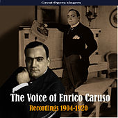Play & Download The Voice of Enrico Caruso, Recordings 1904-1920 by Enrico Caruso | Napster