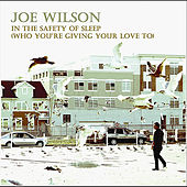 In The Safety of Sleep (Who You're Giving Your Love To) by Joe Wilson