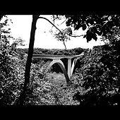 Birdsong Hollow - Single by John Danley