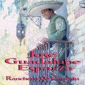 Play & Download Ranchero De Corazón by José Guadalupe Esparza | Napster