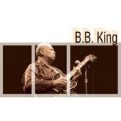 B.B.King von B.B. King