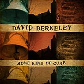 Play & Download Some Kind of Cure by David Berkeley | Napster