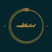Earthlinked by Fdk
