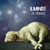 Play & Download LMNO is dead by LMNO | Napster