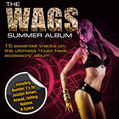 Play & Download The WAGS Summer Album by Various Artists | Napster
