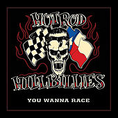 Play & Download You Wanna Race by Hotrod Hillbillies | Napster