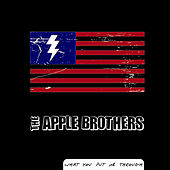 Play & Download What You Put Me Through - Single by The Apple Bros. | Napster