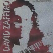 In Scarlet Storm by David Zaffiro
