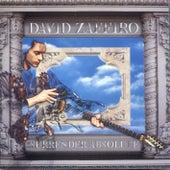 Surrender Absolute by David Zaffiro