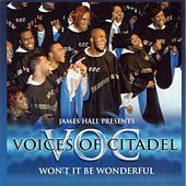 Play & Download Won't It Be Wonderful by Voices Of Citadel | Napster