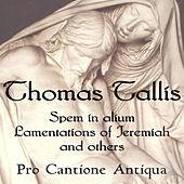 Play & Download Thomas Tallis: Spem in Alium, Lamentations, & more by Pro Cantione Antiqua | Napster