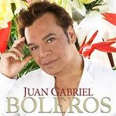 Play & Download Boleros by Juan Gabriel | Napster
