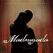 Live at Tralfamadore by Madrugada