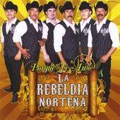 Play & Download Porque Te Amo by Rebeldia Norteña | Napster