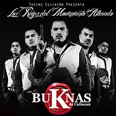 Play & Download Los Reyes del Movimiento Alterado by Various Artists | Napster