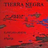 Play & Download Classic - Flamenco Nuevo & Strings by Tierra Negra | Napster