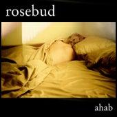 Rosebud by Ahab