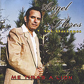 Play & Download Me Tiras A Lion by Angel Flores | Napster