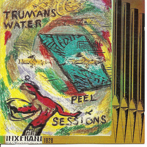 Play & Download The Peel Sessions by Trumans Water | Napster