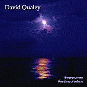Play & Download Begegnungen by David Qualey | Napster