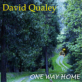 Play & Download One Way Home by David Qualey | Napster