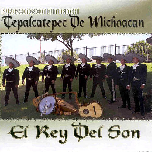 Play & Download El Rey Del Son by Mariachi Tepalcatepec De Michoacan | Napster