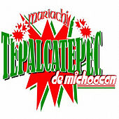 Play & Download Rancheras Y Mas Ranchera by Mariachi Tepalcatepec De Michoacan | Napster