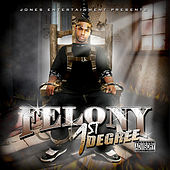 Play & Download 1st Degree by Felony | Napster