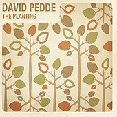 The planting by David Pedde
