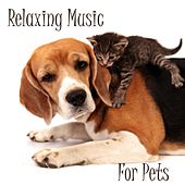 Relaxing Music For Pets by Relaxing Music For Pets