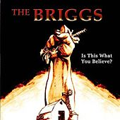 Is This What You Believe? by The Briggs